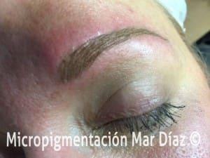 Diseño de ceja pelo a pelo con linea central por Mar Diaz